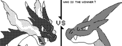 Who is the winner: Mega charizard X and Y