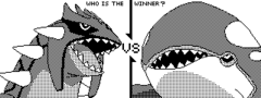 Who is the winner: Groudon and Kyogre