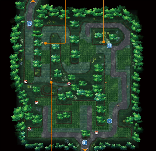 Santalune_Forest_XY.png